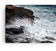 Froth and Fangs Canvas Print