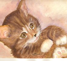Playful Kitty by ClaraM