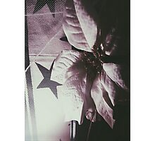 flowers dark  Photographic Print