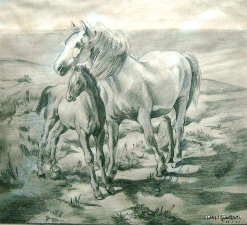 Mare and Colt by Joseph Barbara