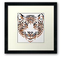 Orange & Black Tiger 2 Framed Print
