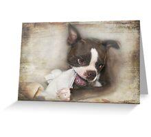 Knick-Knack, Paddywhack, Give the Dog a Bone Greeting Card
