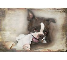 Knick-Knack, Paddywhack, Give the Dog a Bone Photographic Print