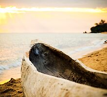 Native Canoe, Meponda, Mozambique by Tim Cowley