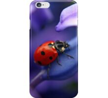 Coccinellidae iPhone Case/Skin