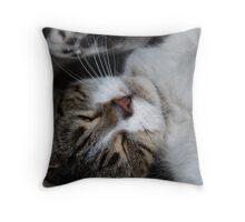 Lil' Series - Playful Throw Pillow