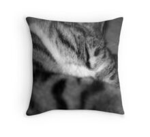 Lil' Series - At Peace Throw Pillow