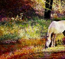 Spotted Horse in Spring by Darlene Lankford Honeycutt