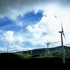 Te Apiti wind farm by Louise Marlborough