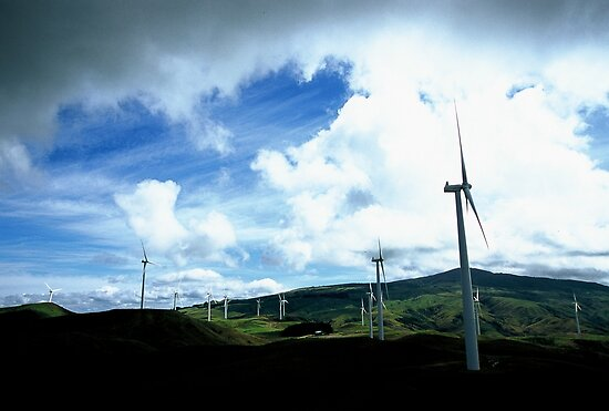Te Apiti wind farm by Louise Marlborough