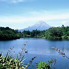 Mt Taranaki by Louise Marlborough