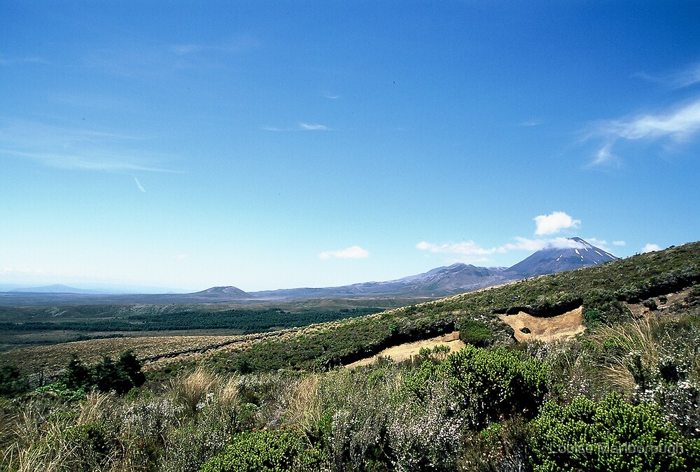 The Three Mts by Louise Marlborough