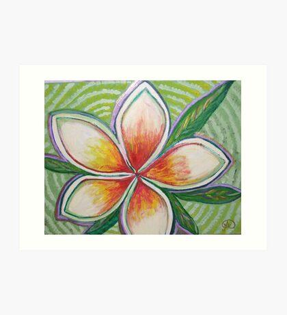 wedding frangipanis Art Print