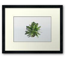 Small Palm Framed Print
