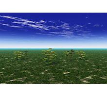 Lush Landscape Photographic Print