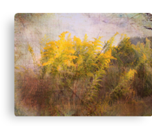 Love of Nature Canvas Print