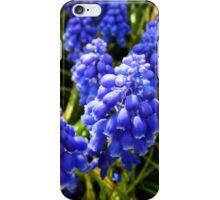 Muscari iPhone Case/Skin