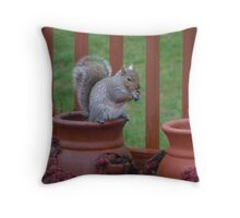 And I thought the Fox was after my hens and chicks!! Throw Pillow