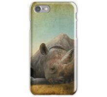 Lazy Days iPhone Case/Skin