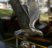 Hudson Super Six - Eagle by Sue Jaeschke