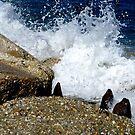 Crashing, smashing, splashing  by Jeff Stroud