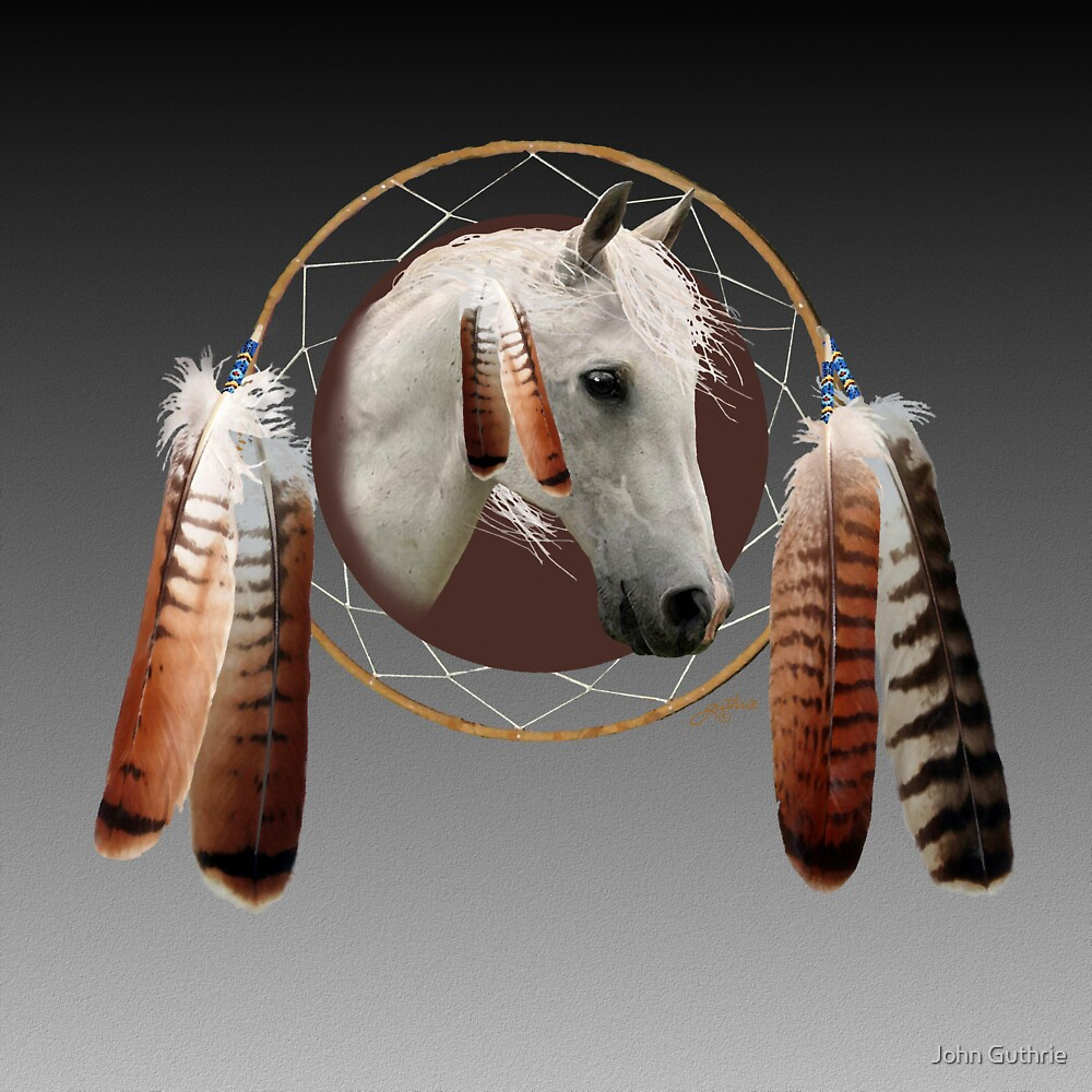 An Indian Pony by John Guthrie