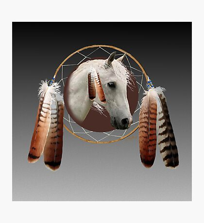 An Indian Pony Photographic Print