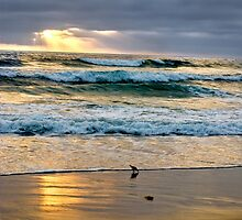 The Coast at Carlsbad by Kgphotographics
