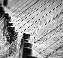 Long shot. by Victor Pugatschew