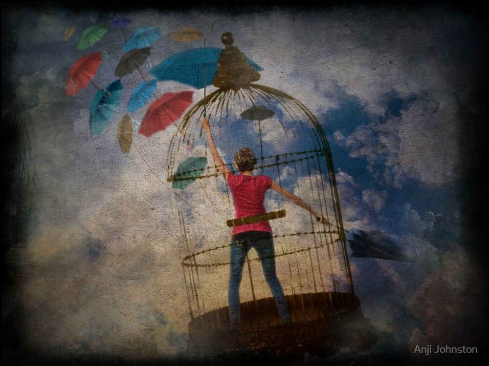 Where there's a Will there's a Way by Anji Johnston