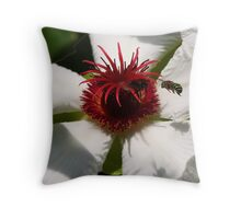 Honey Bee in Green Throw Pillow