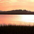 James Island Marsh Sunset by Darlene Lankford Honeycutt