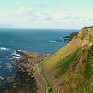The  Giant's Causeway from a High by Finbarr Reilly