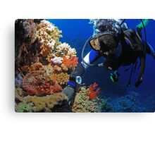 Diver and scorpionfish Canvas Print