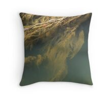 Beneath the surface III Throw Pillow