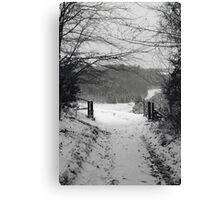 Narnia b&w Canvas Print