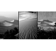 Sensual Lines Photographic Print