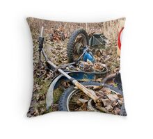 no longer motoring or crossing Throw Pillow