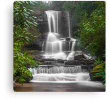 Waterfall Through the Trees Canvas Print