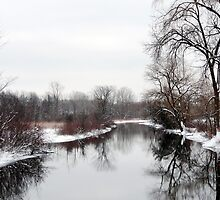 Winter Repose by enchantedImages