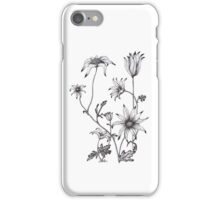 Flannel Flower - Actinotus helianthe iPhone Case/Skin