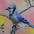 Bluejay by Maria Hathaway Spencer