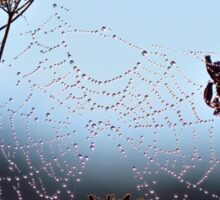 Jeweled Web of Dew Sticker