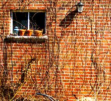 Brick Garage by oldmanradish
