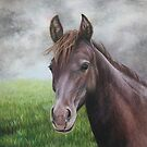 Brown Horse by Maria Hathaway Spencer