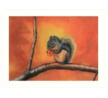 Little Red Squirrel  Art Print