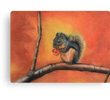 Little Red Squirrel  Canvas Print