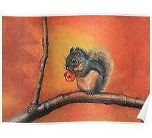Little Red Squirrel  Poster