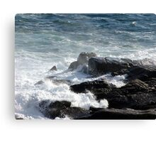 Froth and Fangs (2) Canvas Print