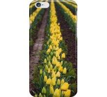 Citron Channels iPhone Case/Skin